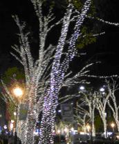 20101208_3.JPG